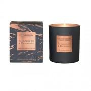 Parfumuota žvakė Stoneglow SANDALWOOD & PATCHOULI *