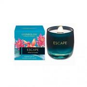Parfumuota žvakė Stoneglow WHITE TEA & MINT, 8x7,8 cm *