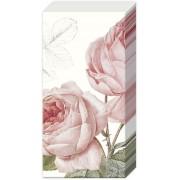 Popierinės nosinaitės ELISABETH, 21x21 cm